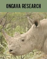 ongava-research